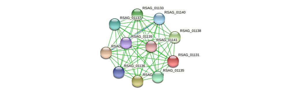 RSAG_01131 protein (Ruminococcus sp. 5139BFAA) - STRING interaction network