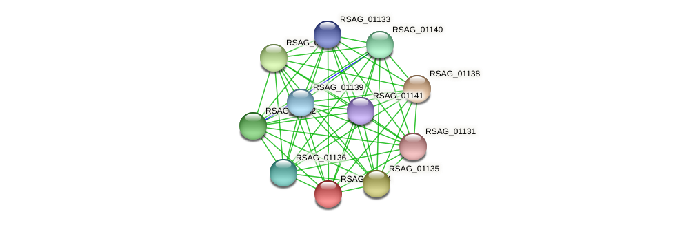 RSAG_01134 protein (Ruminococcus sp. 5139BFAA) - STRING interaction network
