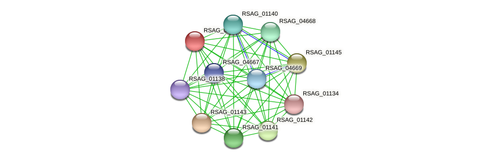 RSAG_01144 protein (Ruminococcus sp. 5139BFAA) - STRING interaction network