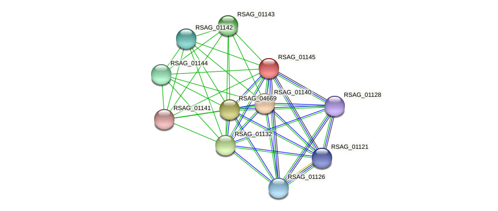 RSAG_01145 protein (Ruminococcus sp. 5139BFAA) - STRING interaction network