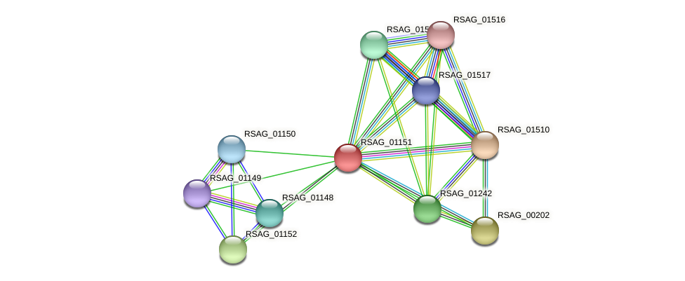 RSAG_01151 protein (Ruminococcus sp. 5139BFAA) - STRING interaction network