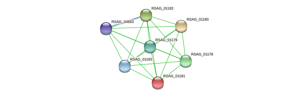 RSAG_01181 protein (Ruminococcus sp. 5139BFAA) - STRING interaction network