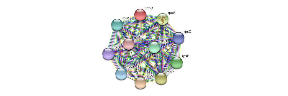 trmD protein (Ruminococcus sp. 5139BFAA) - STRING interaction network
