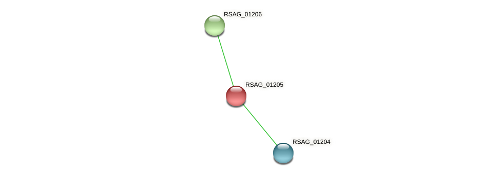 RSAG_01205 protein (Ruminococcus sp. 5139BFAA) - STRING interaction network