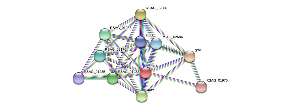 RSAG_01230 protein (Ruminococcus sp. 5139BFAA) - STRING interaction network