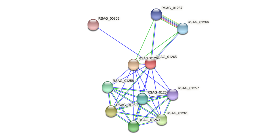 RSAG_01265 protein (Ruminococcus sp. 5139BFAA) - STRING interaction network