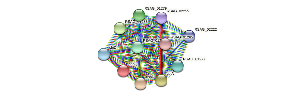cobQ protein (Ruminococcus sp. 5139BFAA) - STRING interaction network