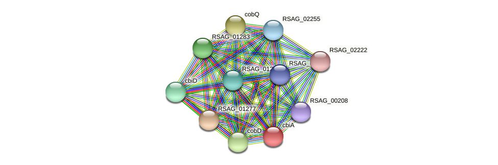 cbiA protein (Ruminococcus sp. 5139BFAA) - STRING interaction network