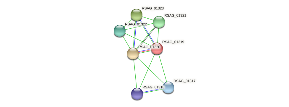 RSAG_01319 protein (Ruminococcus sp. 5139BFAA) - STRING interaction network