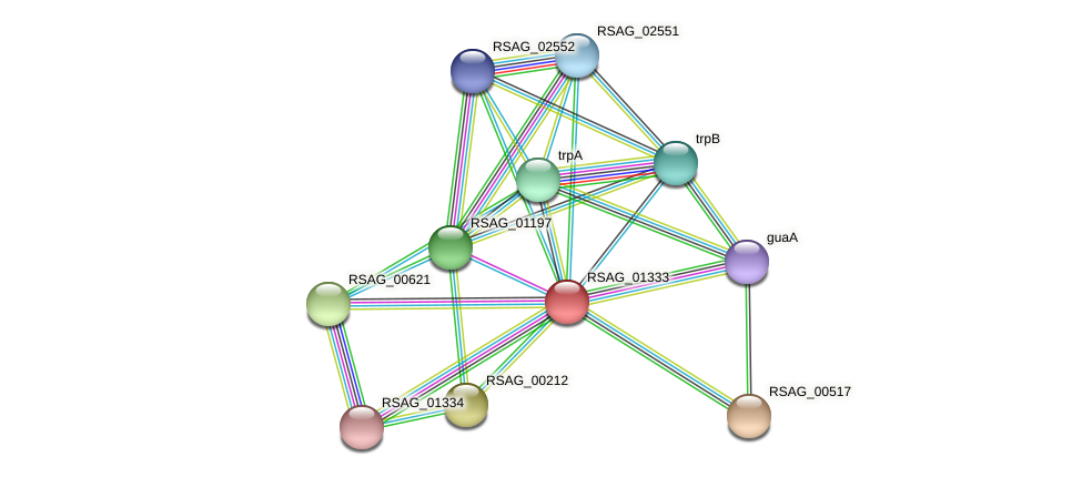 RSAG_01333 protein (Ruminococcus sp. 5139BFAA) - STRING interaction network