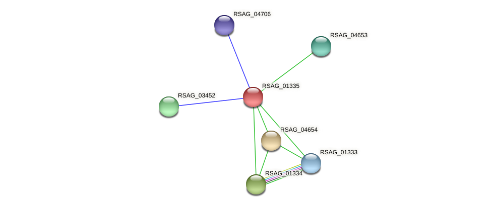 RSAG_01335 protein (Ruminococcus sp. 5139BFAA) - STRING interaction network