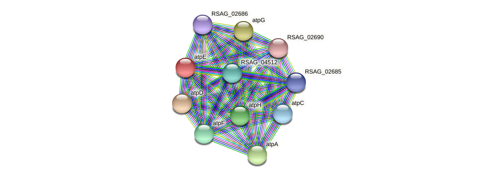 RSAG_01383 protein (Ruminococcus sp. 5139BFAA) - STRING interaction network