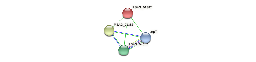 RSAG_01387 protein (Ruminococcus sp. 5139BFAA) - STRING interaction network