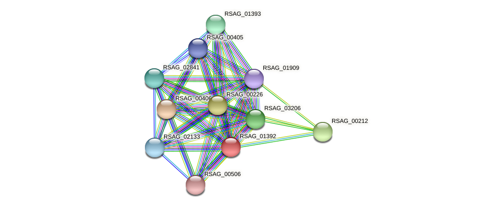 RSAG_01392 protein (Ruminococcus sp. 5139BFAA) - STRING interaction network