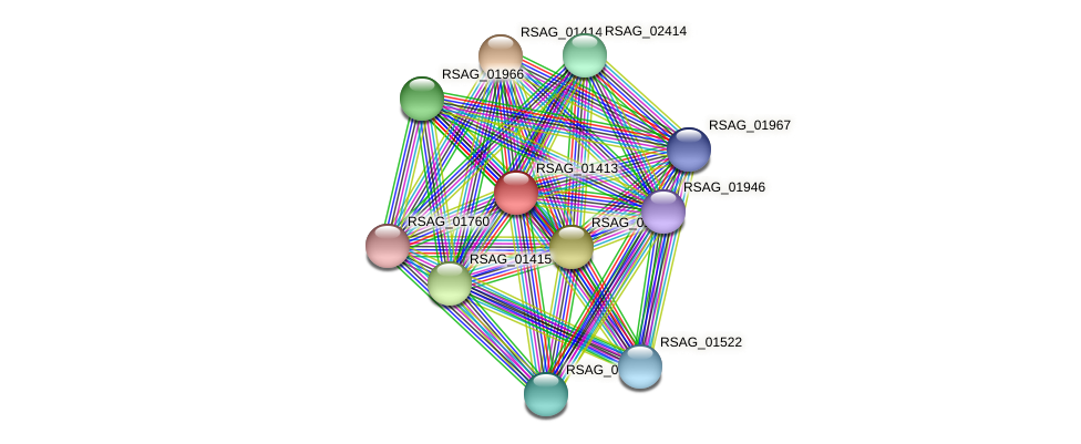 RSAG_01413 protein (Ruminococcus sp. 5139BFAA) - STRING interaction network