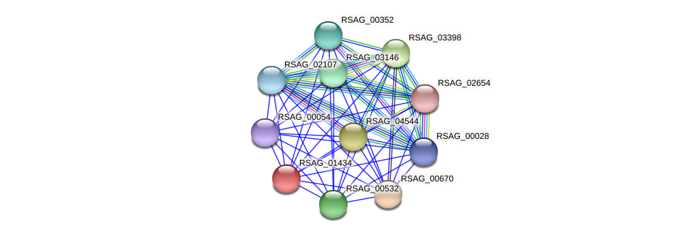 RSAG_01434 protein (Ruminococcus sp. 5139BFAA) - STRING interaction network