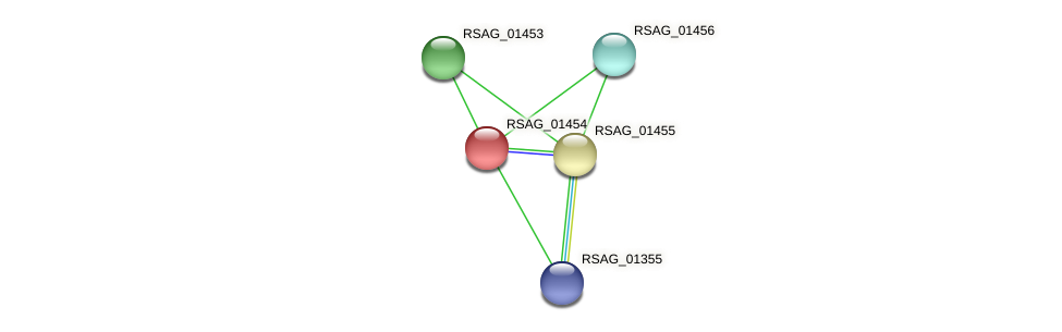 RSAG_01454 protein (Ruminococcus sp. 5139BFAA) - STRING interaction network