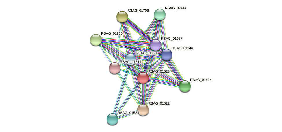 RSAG_01523 protein (Ruminococcus sp. 5139BFAA) - STRING interaction network