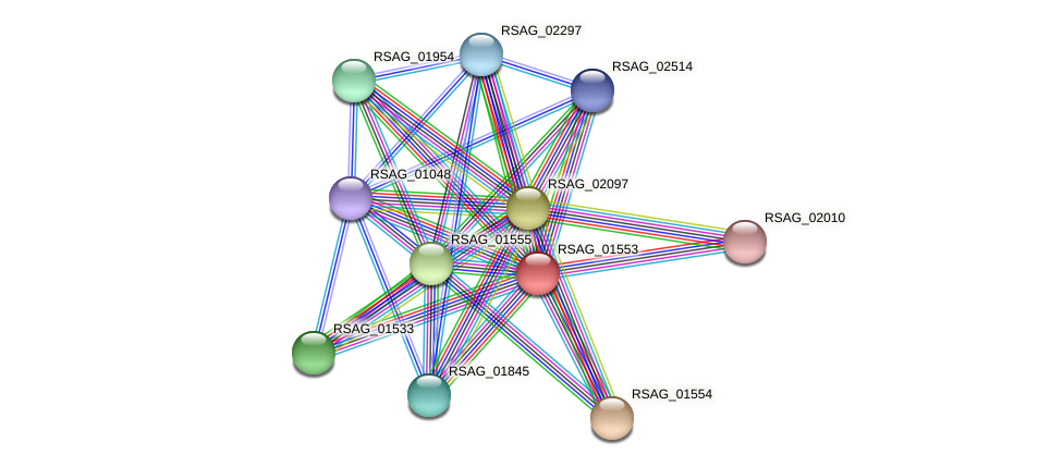 RSAG_01553 protein (Ruminococcus sp. 5139BFAA) - STRING interaction network