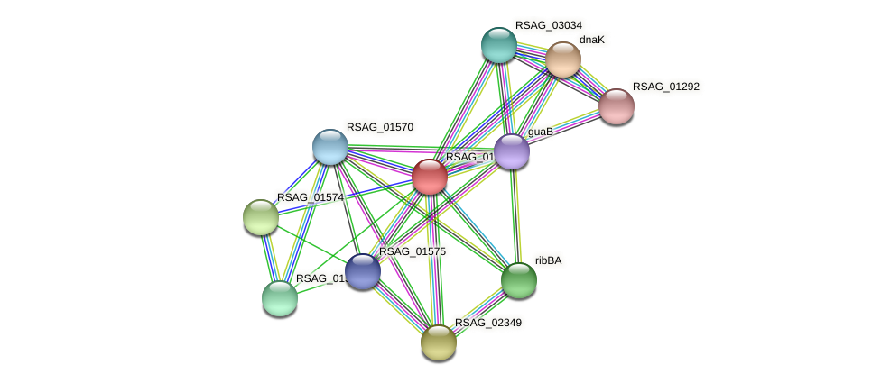 RSAG_01572 protein (Ruminococcus sp. 5139BFAA) - STRING interaction network