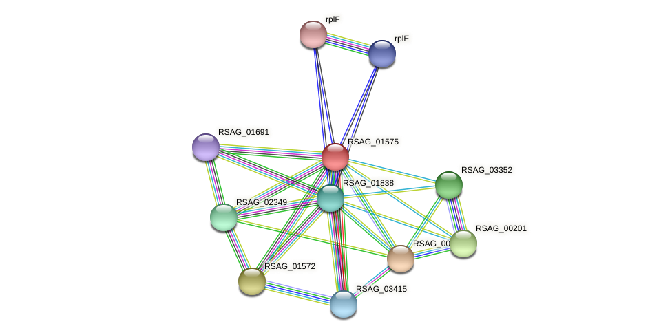 RSAG_01575 protein (Ruminococcus sp. 5139BFAA) - STRING interaction network