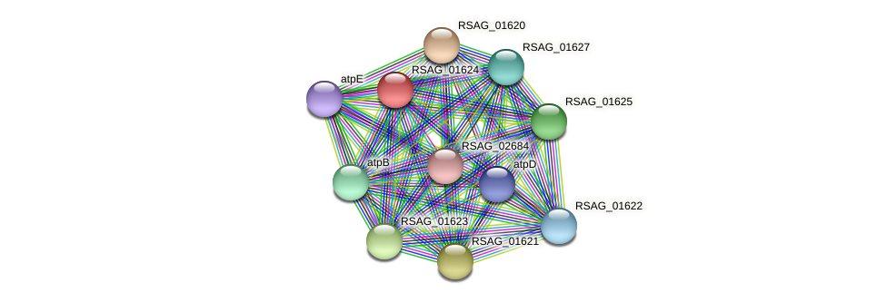 RSAG_01624 protein (Ruminococcus sp. 5139BFAA) - STRING interaction network