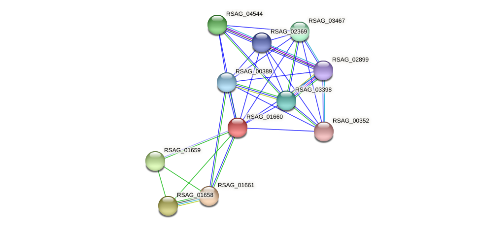 RSAG_01660 protein (Ruminococcus sp. 5139BFAA) - STRING interaction network