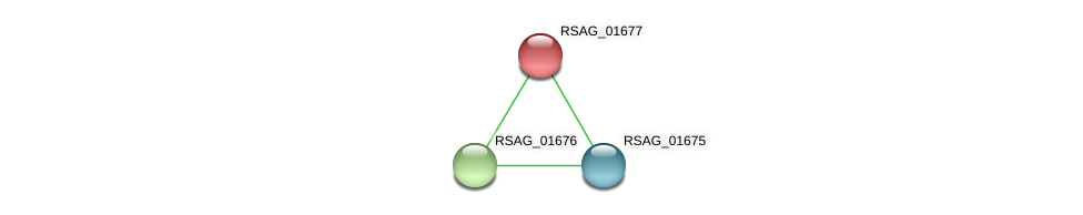 RSAG_01677 protein (Ruminococcus sp. 5139BFAA) - STRING interaction network