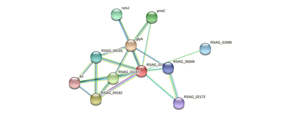 RSAG_01694 protein (Ruminococcus sp. 5139BFAA) - STRING interaction network