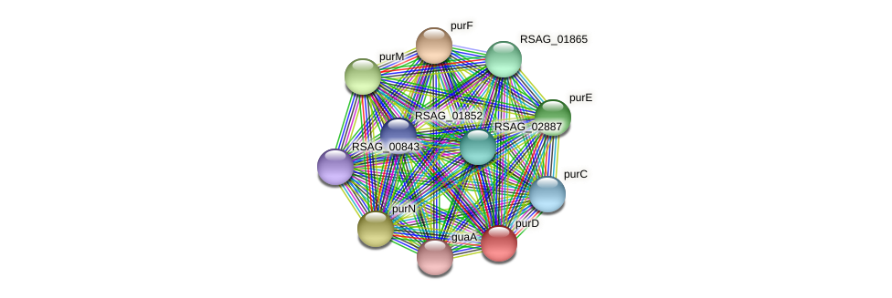 purD protein (Ruminococcus sp. 5139BFAA) - STRING interaction network
