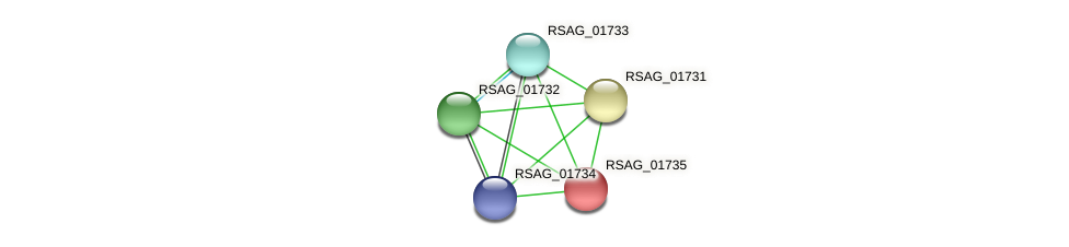 RSAG_01735 protein (Ruminococcus sp. 5139BFAA) - STRING interaction network
