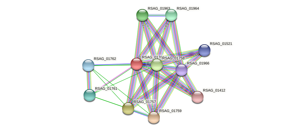 RSAG_01760 protein (Ruminococcus sp. 5139BFAA) - STRING interaction network