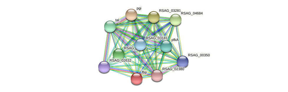 fbp protein (Ruminococcus sp. 5139BFAA) - STRING interaction network