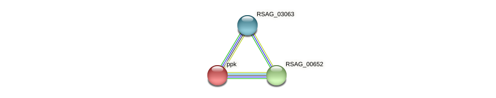 RSAG_01913 protein (Ruminococcus sp. 5139BFAA) - STRING interaction network