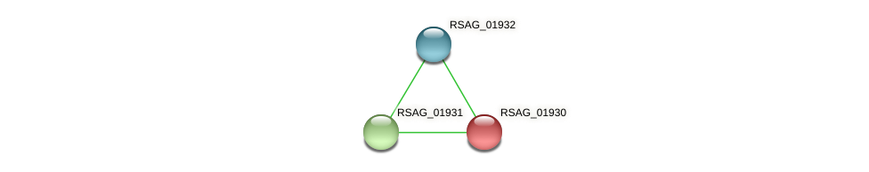 RSAG_01930 protein (Ruminococcus sp. 5139BFAA) - STRING interaction network