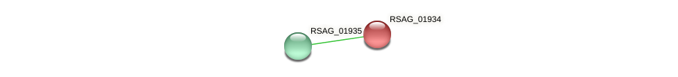 RSAG_01934 protein (Ruminococcus sp. 5139BFAA) - STRING interaction network
