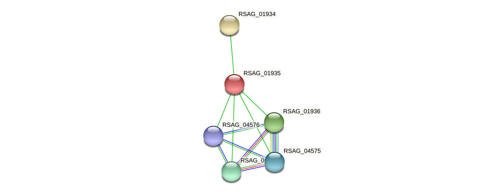 RSAG_01935 protein (Ruminococcus sp. 5139BFAA) - STRING interaction network
