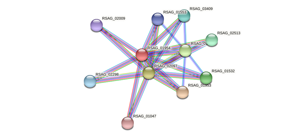 RSAG_01954 protein (Ruminococcus sp. 5139BFAA) - STRING interaction network