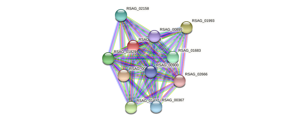 RSAG_01994 protein (Ruminococcus sp. 5139BFAA) - STRING interaction network