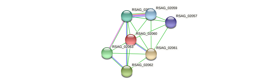 RSAG_02060 protein (Ruminococcus sp. 5139BFAA) - STRING interaction network