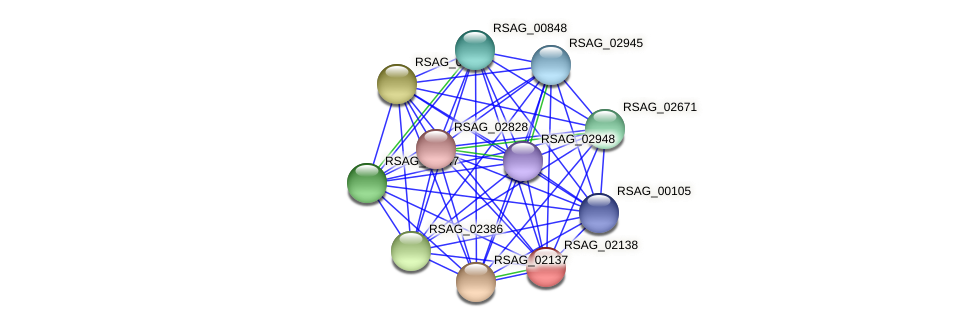 RSAG_02138 protein (Ruminococcus sp. 5139BFAA) - STRING interaction network