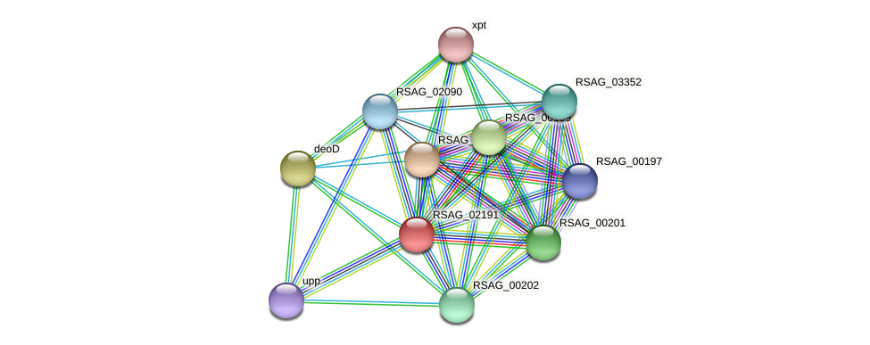 RSAG_02191 protein (Ruminococcus sp. 5139BFAA) - STRING interaction network
