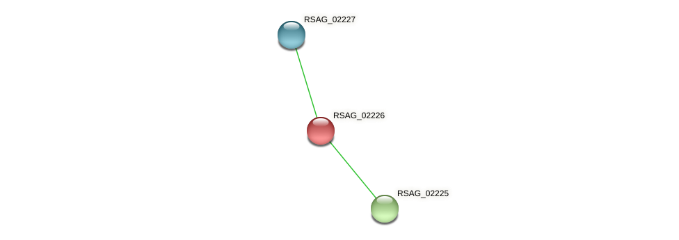 RSAG_02226 protein (Ruminococcus sp. 5139BFAA) - STRING interaction network
