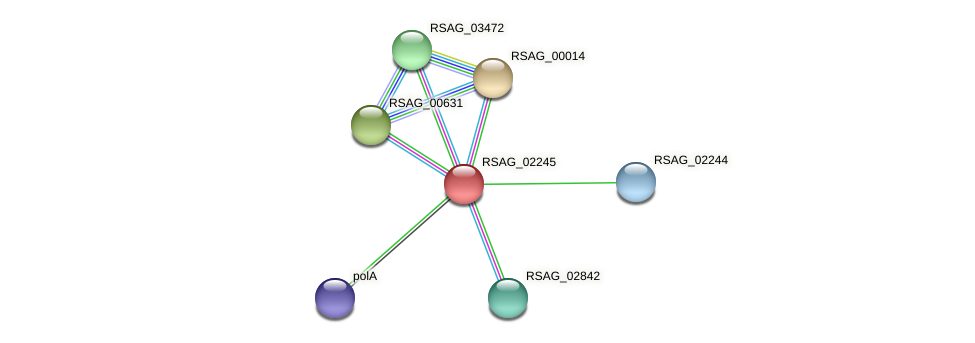 RSAG_02245 protein (Ruminococcus sp. 5139BFAA) - STRING interaction network