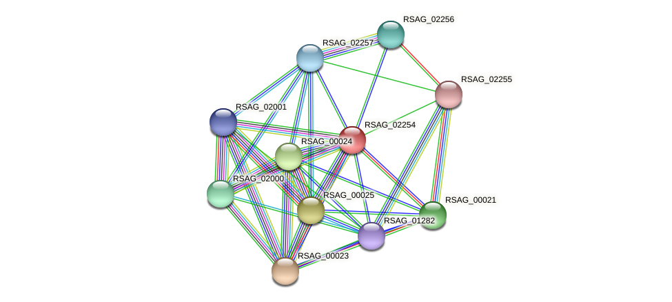 RSAG_02254 protein (Ruminococcus sp. 5139BFAA) - STRING interaction network