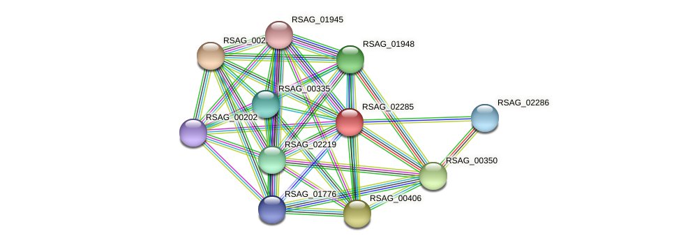 RSAG_02285 protein (Ruminococcus sp. 5139BFAA) - STRING interaction network