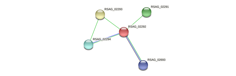 RSAG_02292 protein (Ruminococcus sp. 5139BFAA) - STRING interaction network