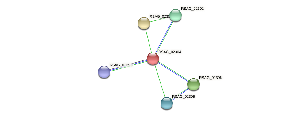 RSAG_02304 protein (Ruminococcus sp. 5139BFAA) - STRING interaction network
