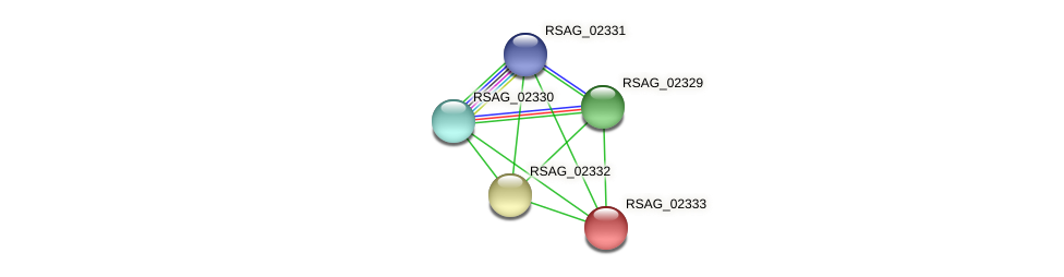 RSAG_02333 protein (Ruminococcus sp. 5139BFAA) - STRING interaction network
