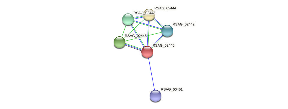 RSAG_02446 protein (Ruminococcus sp. 5139BFAA) - STRING interaction network